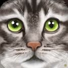 Download hacked Ultimate Cat Simulator for Android - MOD Unlimited money