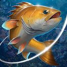 Download hack Fishing Hook for Android - MOD Unlimited money