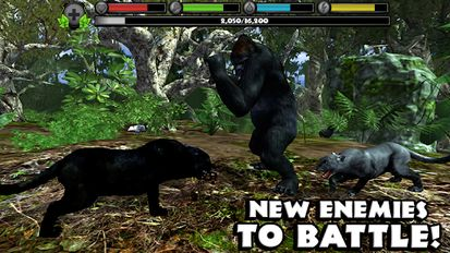Download hack Panther Simulator for Android - MOD Money